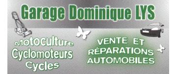 DOMINIQUE LYS